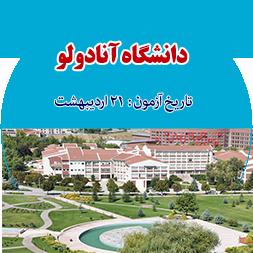دانشگاه آنادولو